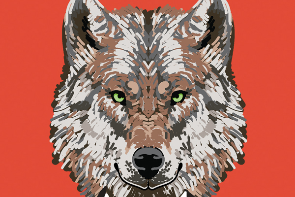 Lone Wolf Illustration