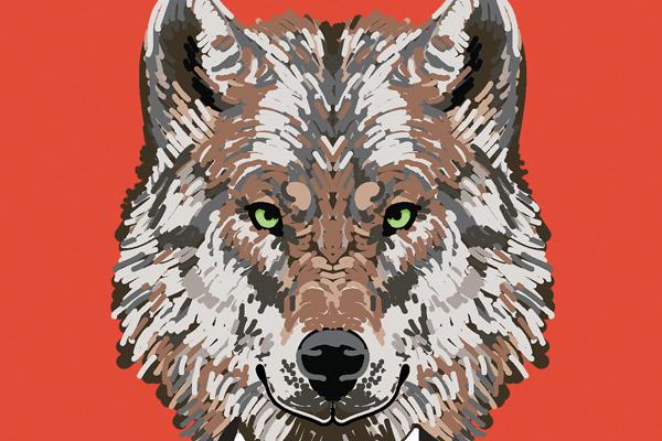 Lone Wolf Illustration